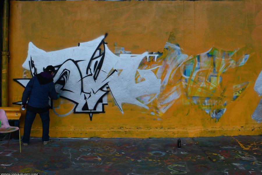 Photo de SKULE, ODV, réalisée au Maquis-art Wall of fame - L'aérosol, Paris