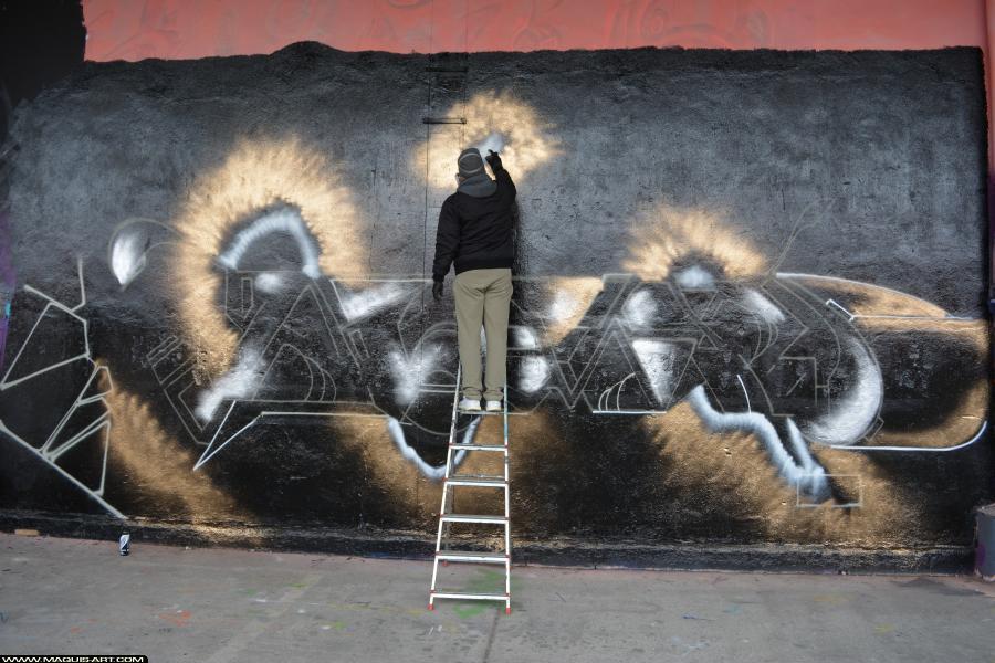 Photo de NOMAD, réalisée au Maquis-art Wall of fame - L'aérosol, Paris