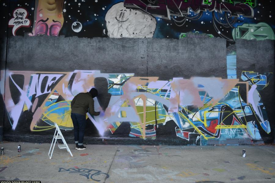 Photo de CRAZER, ADM, VMD, réalisée au Maquis-art Wall of fame - L'aérosol, Paris