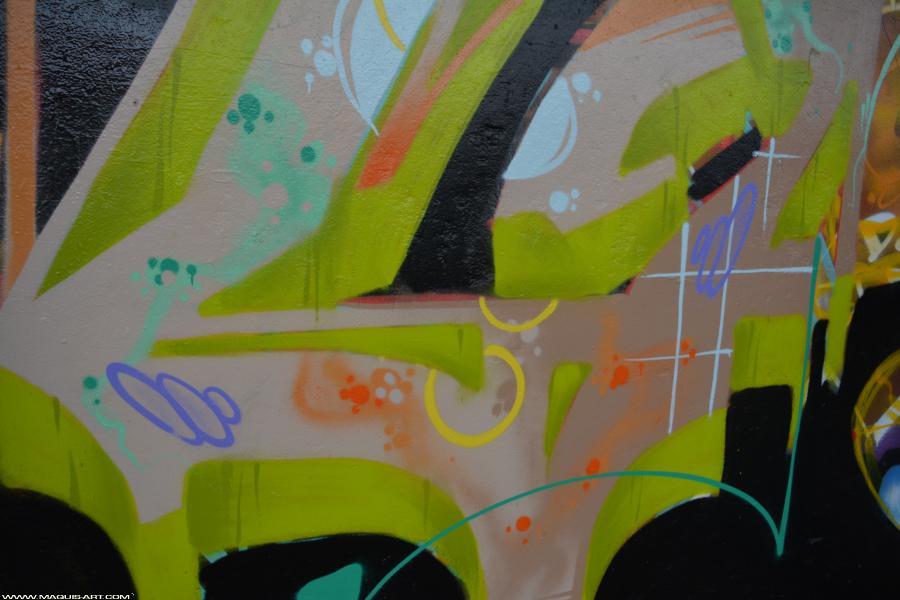 Photo de GABONE, CES, BNC, réalisée au Maquis-art Wall of fame - L'aérosol, Paris
