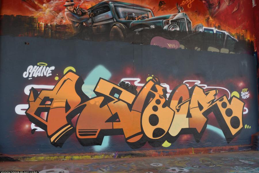 Photo de SHANE, ODV, réalisée au Maquis-art Wall of fame - L'aérosol, Paris