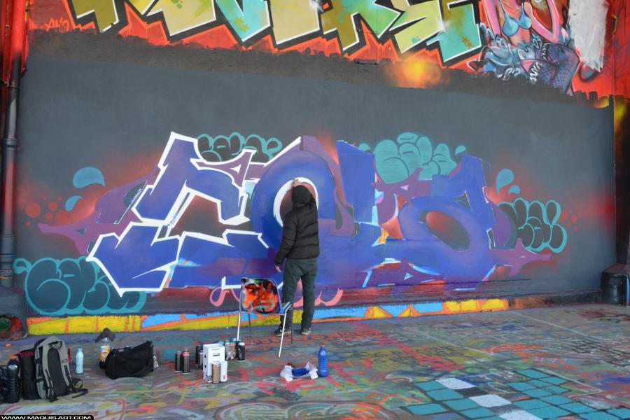 Photo de COLA, 2HS, QCK, réalisée au Maquis-art Wall of fame - L'aérosol, Paris