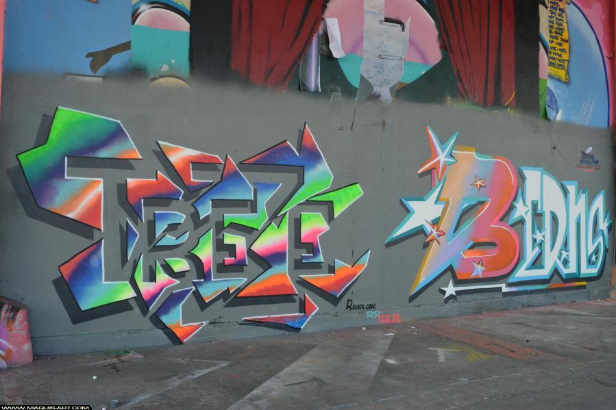 Photo de REVER, BERNS, ODV, réalisée au Maquis-art Wall of fame - L'aérosol, Paris
