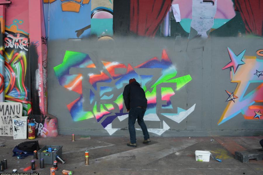 Photo de REVER, ODV, réalisée au Maquis-art Wall of fame - L'aérosol, Paris