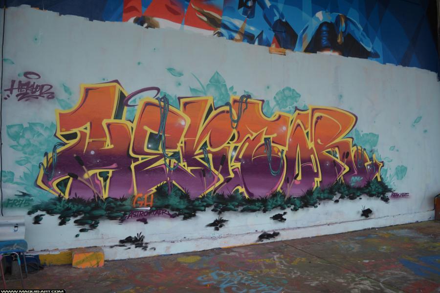 Photo de TOREK, ODV, FR75, 319, réalisée au Maquis-art Wall of fame - L'aérosol, Paris