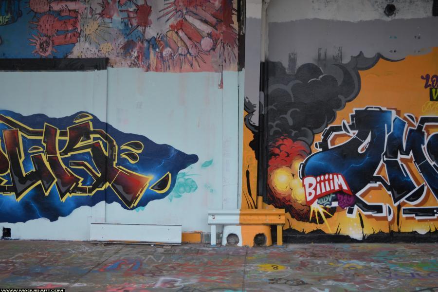Photo de OMOUK, ODV, 319, FR75, réalisée au Maquis-art Wall of fame - L'aérosol, Paris