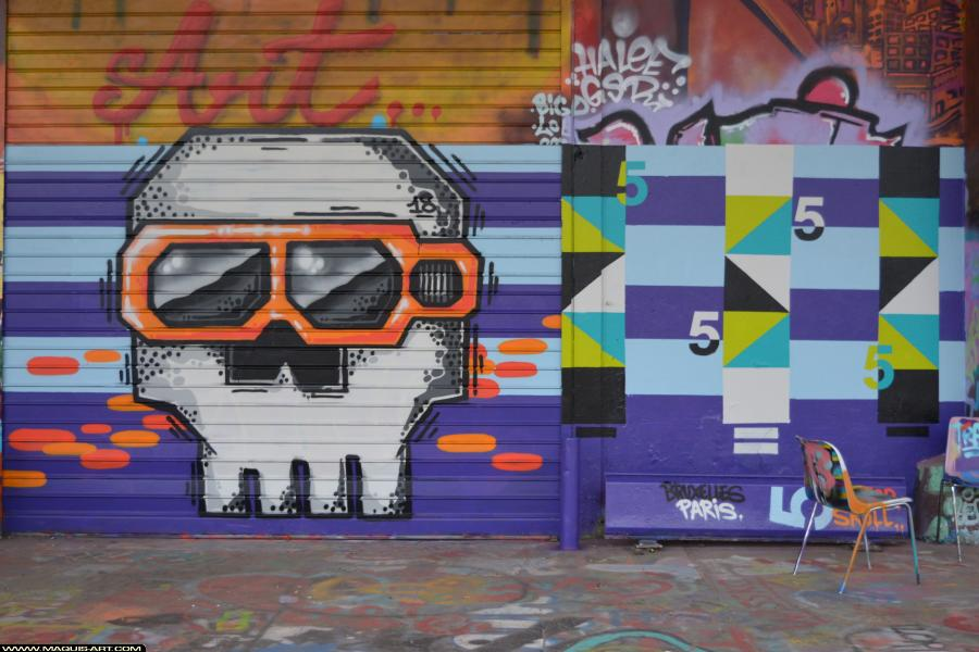 Photo de HIPSTER SKULLS, réalisée au Maquis-art Wall of fame - L'aérosol, Paris