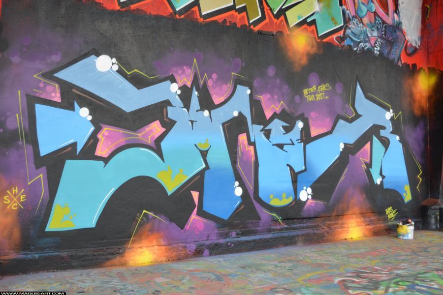 Photo de BOMER, ELR, réalisée au Maquis-art Wall of fame - L'aérosol, Paris