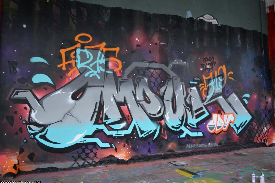 Photo de OMOUK, ODV, FR75, 319, réalisée au Maquis-art Wall of fame - L'aérosol, Paris