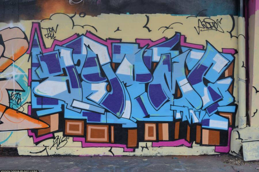 Photo de AGOMER, réalisée au Maquis-art Wall of fame - L'aérosol, Paris