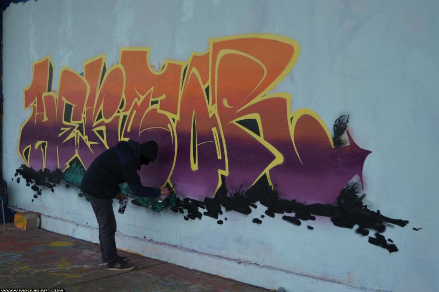 Photo de TOREK, RJK, GH, réalisée au Maquis-art Wall of fame - L'aérosol, Paris