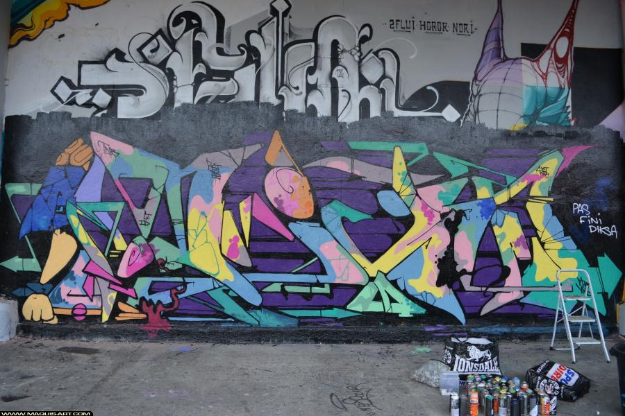 Photo de DIKSA, CKT, GT, CMP, RST88, VMD, réalisée au Maquis-art Wall of fame - L'aérosol, Paris