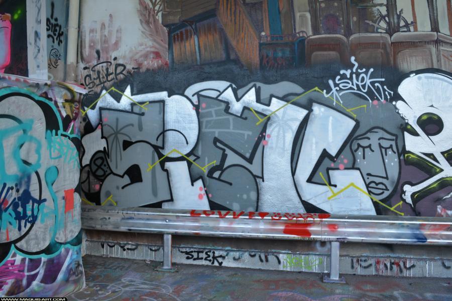Photo de SIEK, MSA, S1TR, réalisée au Maquis-art Wall of fame - L'aérosol, Paris