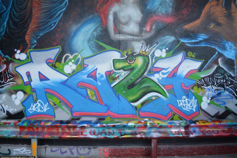 Photo de RAZY, réalisée au Maquis-art Wall of fame - L'aérosol, Paris