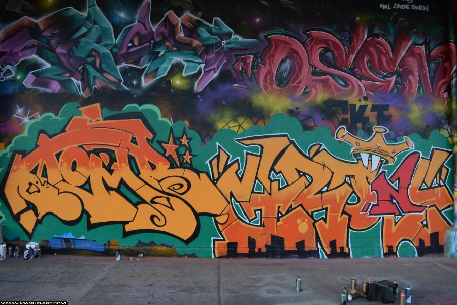 Photo de TOMB, ???, réalisée au Maquis-art Wall of fame - L'aérosol, Paris
