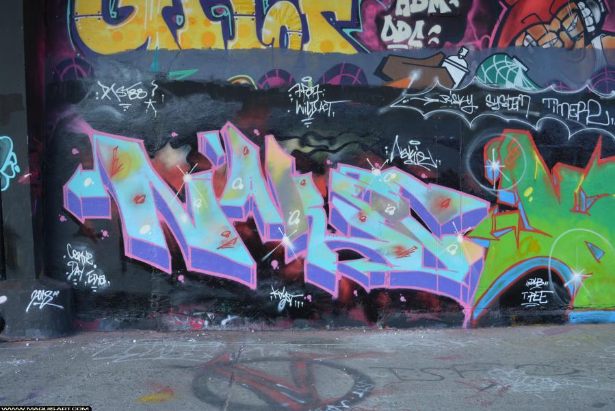 Photo de NAKIE, 7FA7, RST88, réalisée au Maquis-art Wall of fame - L'aérosol, Paris