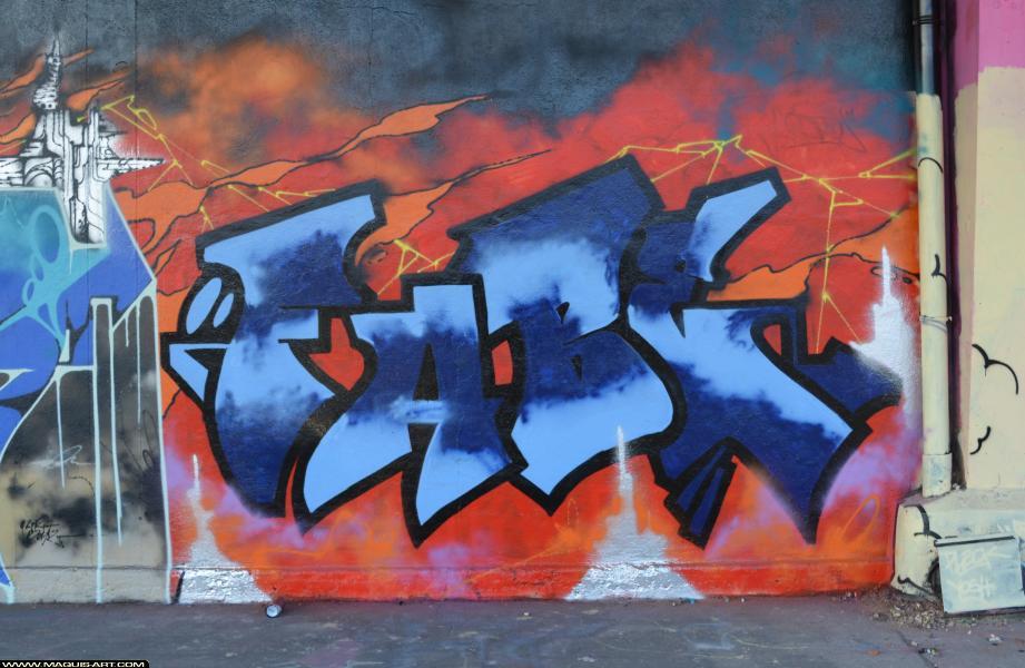 Photo de FABE, réalisée au Maquis-art Wall of fame - L'aérosol, Paris