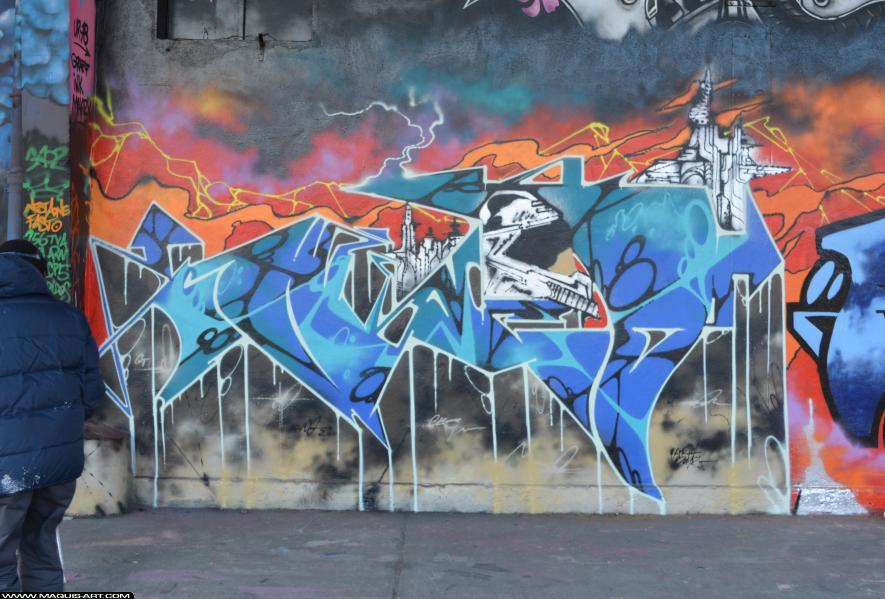 Photo de FUNC88, réalisée au Maquis-art Wall of fame - L'aérosol, Paris