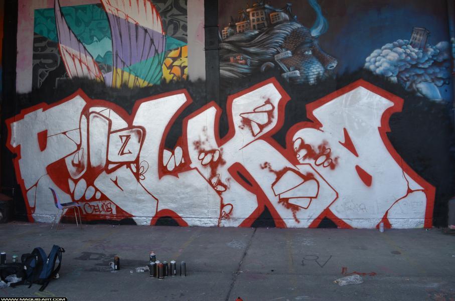 Photo de POLKA, 3DT, CIA, ABS, réalisée au Maquis-art Wall of fame - L'aérosol, Paris