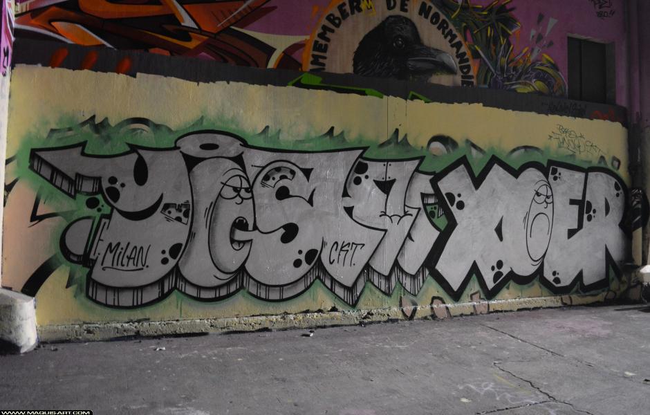 Photo de YOSH, XOER, 3DT, CKT, VG, réalisée au Maquis-art Wall of fame - L'aérosol, Paris