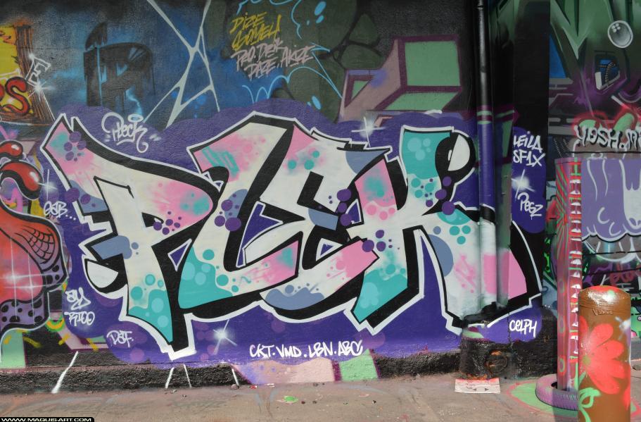Photo de PLEK, ABC, ASG, CKT, VMD, réalisée au Maquis-art Wall of fame - L'aérosol, Paris