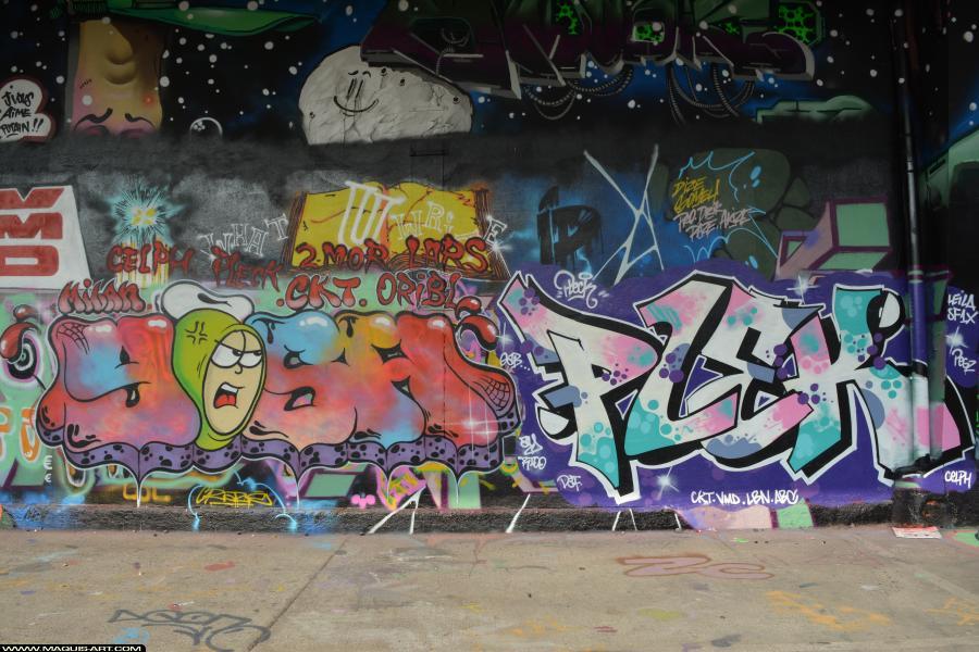 Photo de PLEK, YOSH, CKT, VG, ABS, ASG, VMD, réalisée au Maquis-art Wall of fame - L'aérosol, Paris