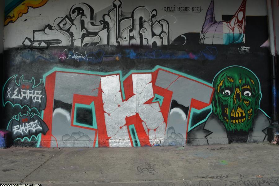 Photo de LARS, EKEE, CKT, réalisée au Maquis-art Wall of fame - L'aérosol, Paris