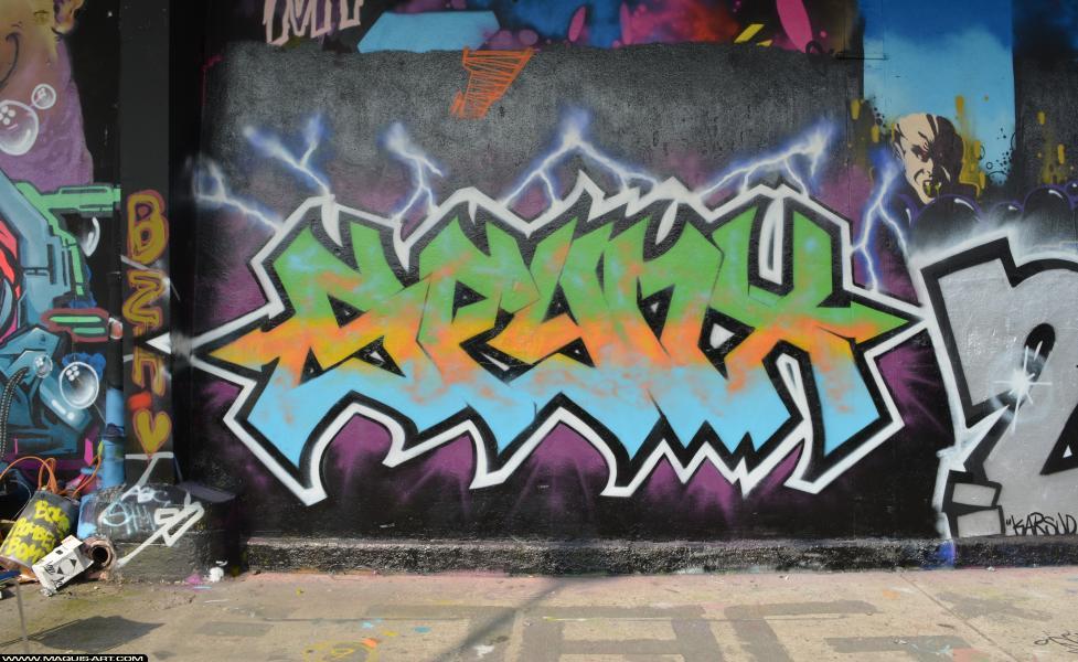 Photo de SFINX, réalisée au Maquis-art Wall of fame - L'aérosol, Paris