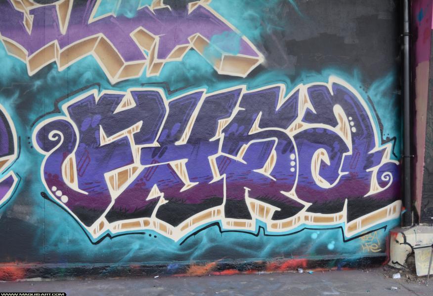 Photo de FYSA, réalisée au Maquis-art Wall of fame - L'aérosol, Paris