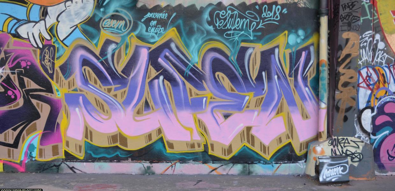 Photo de SUFEN, réalisée au Maquis-art Wall of fame - L'aérosol, Paris