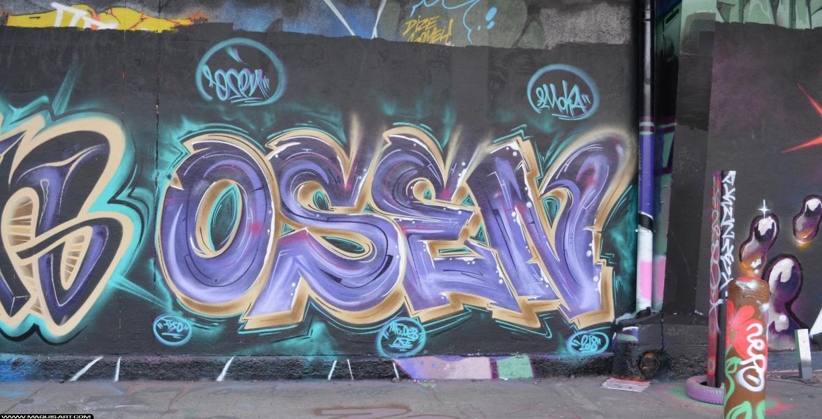 Photo de OSEN, MFOEB, LFE, réalisée au Maquis-art Wall of fame - L'aérosol, Paris