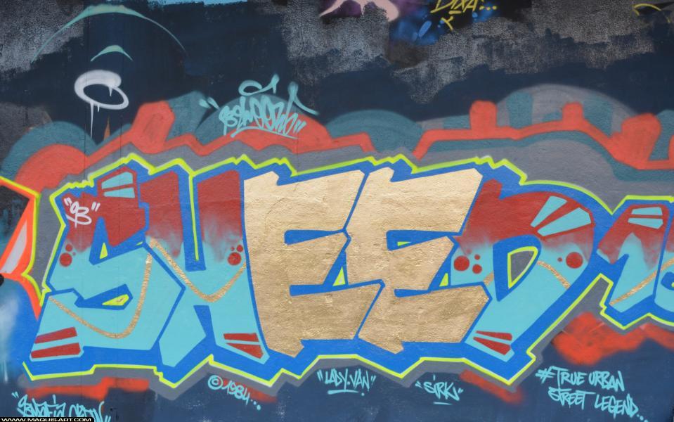 Photo de SHEED16, 93MC, 1984, réalisée au Maquis-art Wall of fame - L'aérosol, Paris