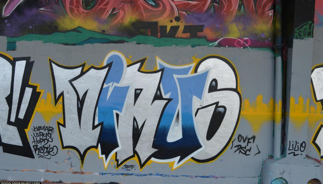 Photo de VIRUS, DSC, OVF, réalisée au Maquis-art Wall of fame - L'aérosol, Paris