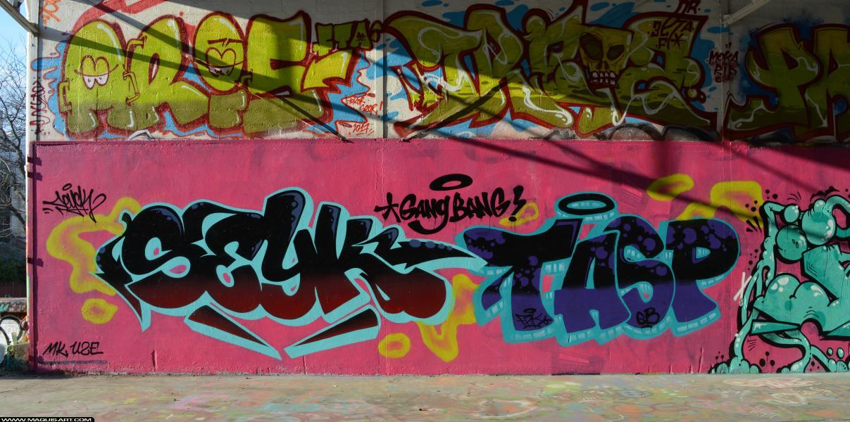 Photo de SEYCK, TASP, UZE, MK, GB, FPK, réalisée au Maquis-art Wall of fame - L'aérosol, Paris