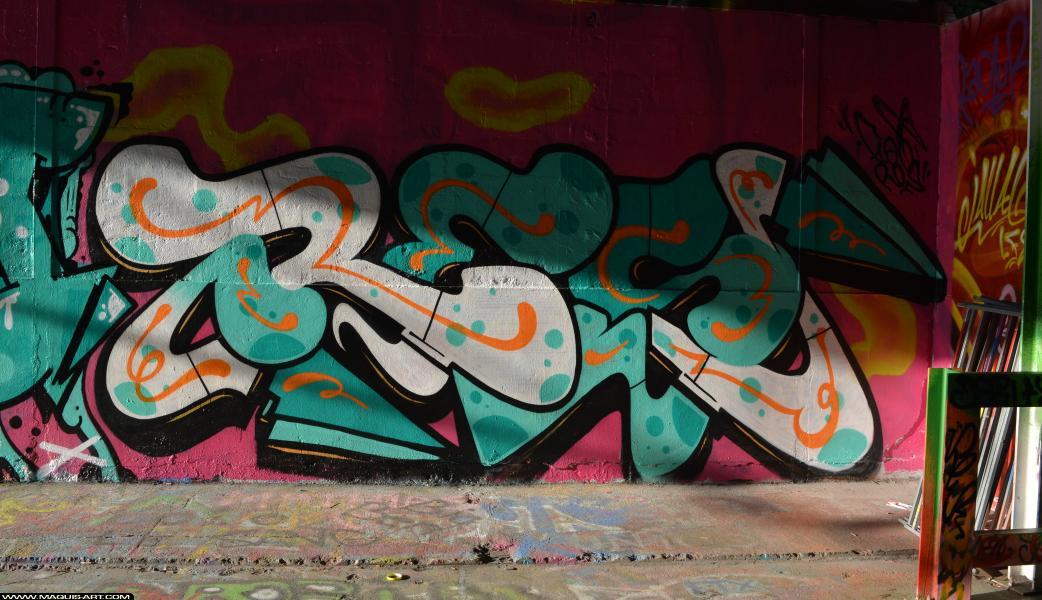 Photo de RES, réalisée au Maquis-art Wall of fame - L'aérosol, Paris