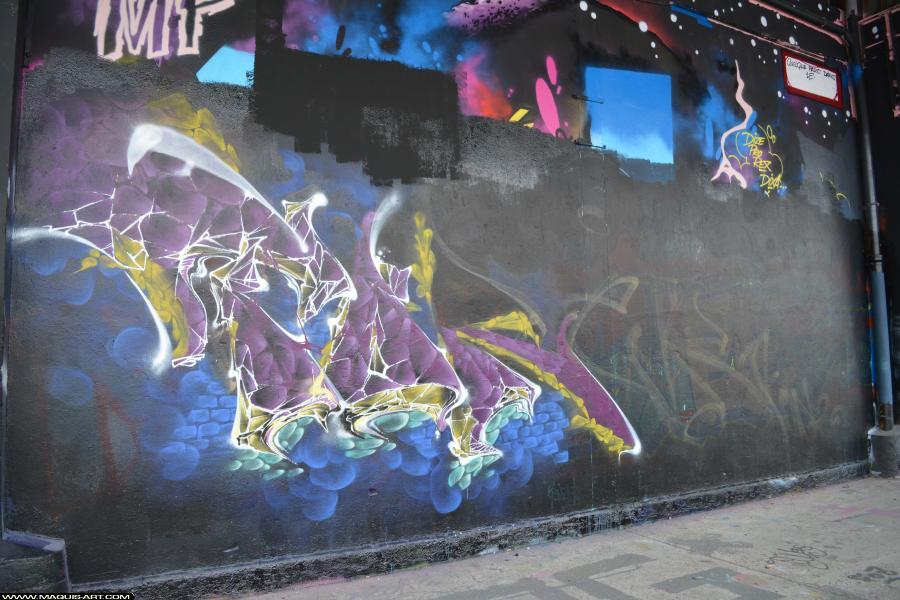 Photo de TOREK, RJK, TSP, GH, ODV, FR75, réalisée au Maquis-art Wall of fame - L'aérosol, Paris