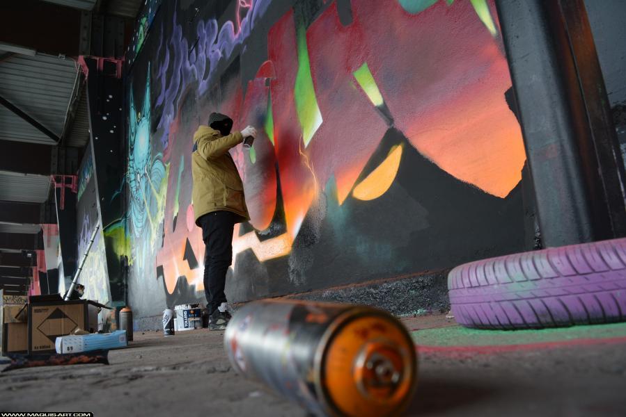Photo de OMOUK, FR75, ODV, 319, réalisée au Maquis-art Wall of fame - L'aérosol, Paris
