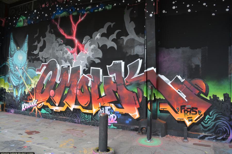 Photo de OMOUK, FR75, réalisée au Maquis-art Wall of fame - L'aérosol, Paris