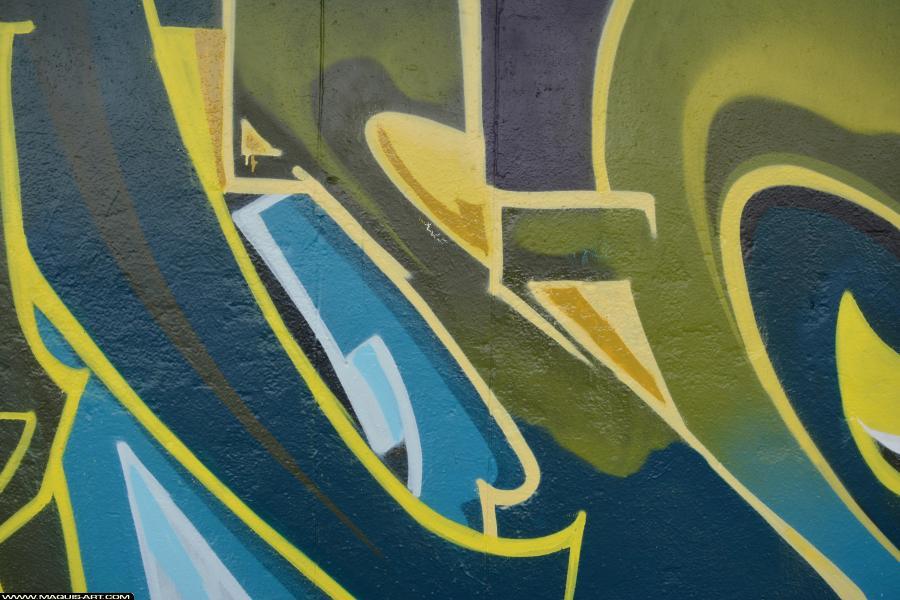 Photo de SINCK, réalisée au Maquis-art Wall of fame - L'aérosol, Paris