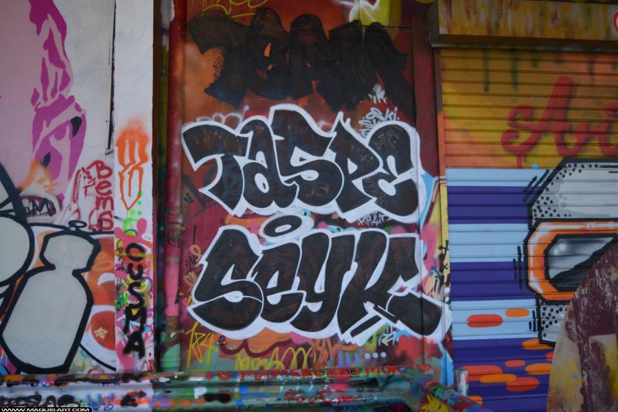 Photo de SEYCK, TASPE, réalisée au Maquis-art Wall of fame - L'aérosol, Paris