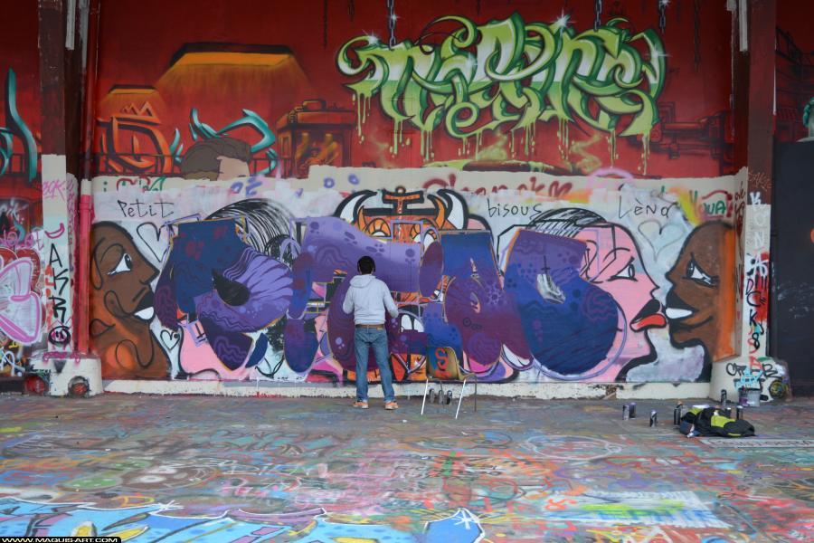 Photo de PITIAO, ODV, réalisée au Maquis-art Wall of fame - L'aérosol, Paris