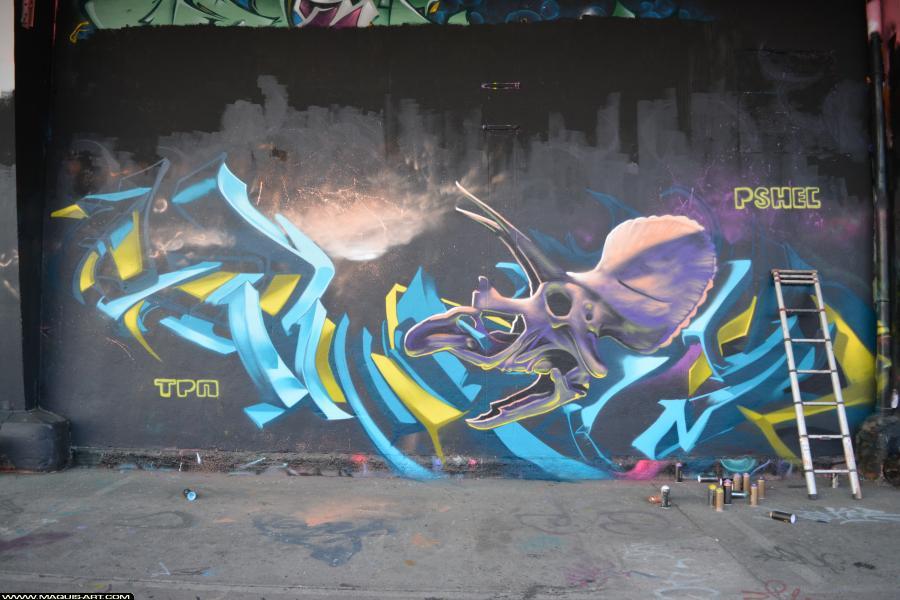 Photo de HEC, RAPHE, CALIGR, PSH, TPN, réalisée au Maquis-art Wall of fame - L'aérosol, Paris