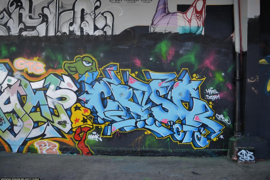 Photo de CRISE (OPC CTC), réalisée au Maquis-art Wall of fame - L'aérosol, Paris