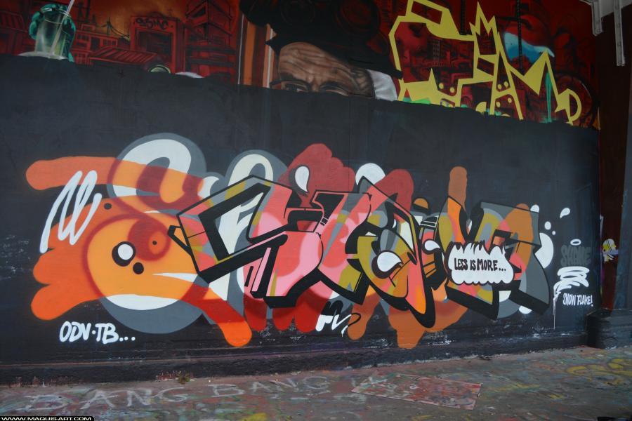 Photo de SHANE, réalisée au Maquis-art Wall of fame - L'aérosol, Paris