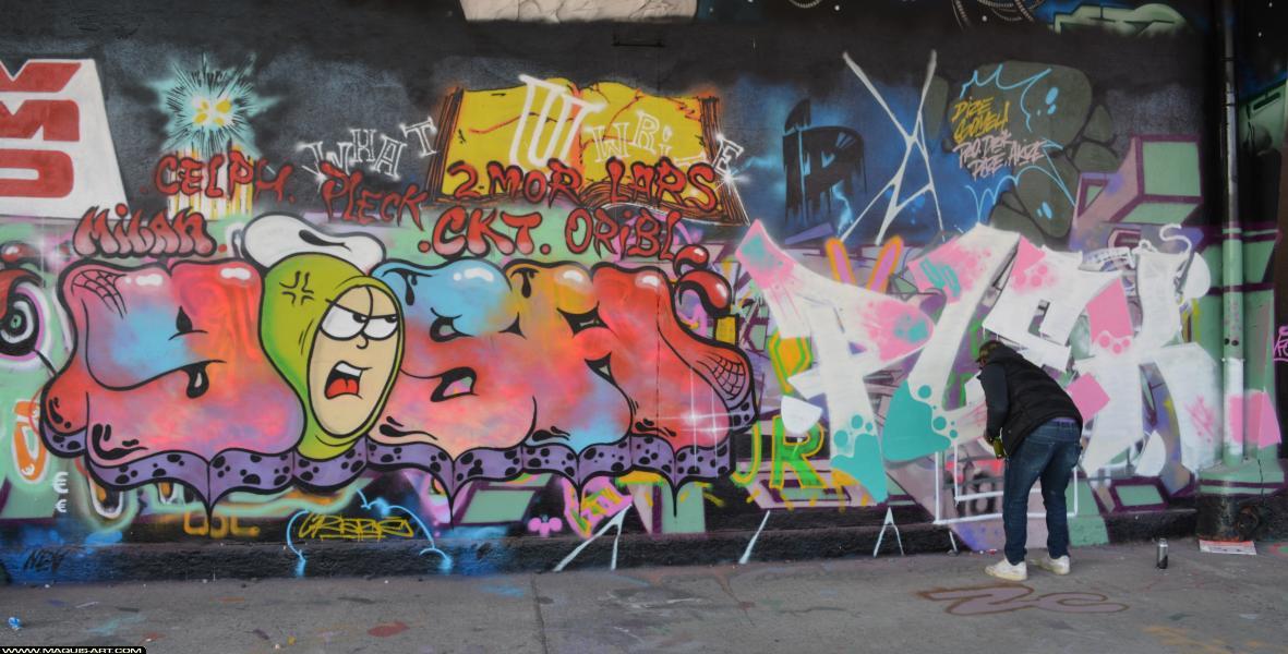 Photo de YOSH, PLEK, réalisée au Maquis-art Wall of fame - L'aérosol, Paris