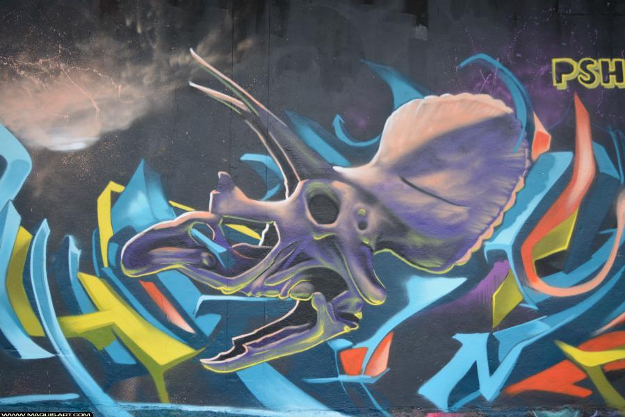 Photo de RAPHE, HEC, PSH, réalisée au Maquis-art Wall of fame - L'aérosol, Paris