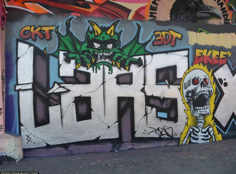 Photo de LARS, CKT, 3DT, réalisée au Maquis-art Wall of fame - L'aérosol, Paris