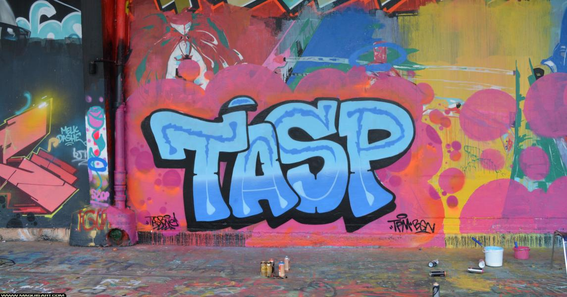 Photo de TASP, TPM, BGN, réalisée au Maquis-art Wall of fame - L'aérosol, Paris