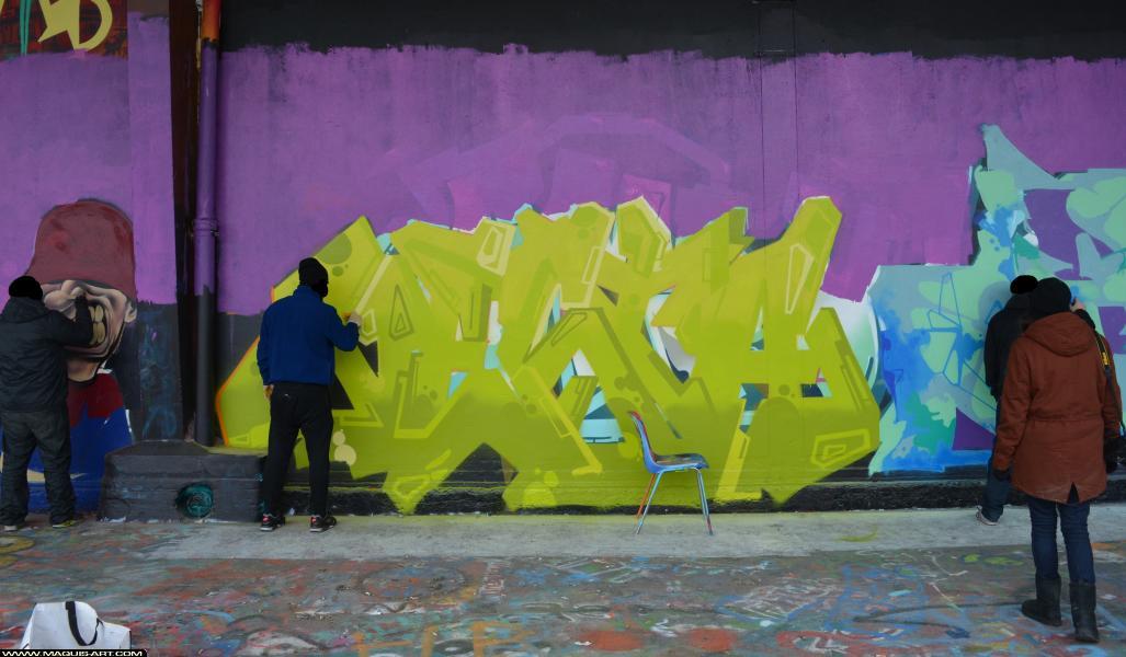 Photo de ARM, TVA, DSK, NESTA, réalisée au Maquis-art Wall of fame - L'aérosol, Paris