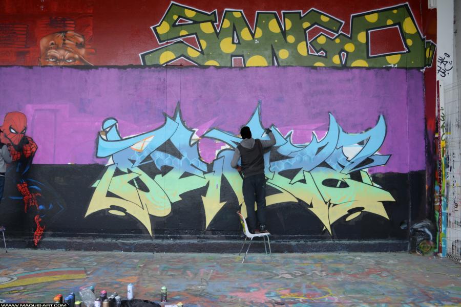 Photo de SEAZ (TVA CP5), réalisée au Maquis-art Wall of fame - L'aérosol, Paris